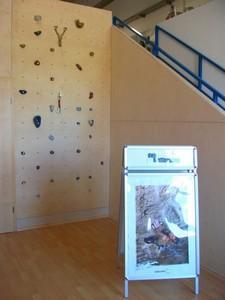 Dein-Klettershop.de retail shop climbing wall