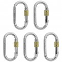 5 x Oval Steel Carabiner Lion by Alpidex