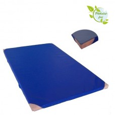 Gym Mat 200 x 125 x 8 cm with Anti-Slip Base, Leather Corners and Carry Handles RG 120 (hard)
