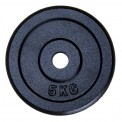 Barbell Weight Plates Cast Iron 4 x 5 kg in professional quality by BB Sport inclusive of Training Guide